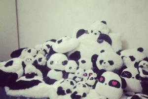 20120806_Pandalicious